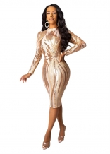 Beige Long Sleeve O-Neck Mesh Sequins Bodycons Mini Dress